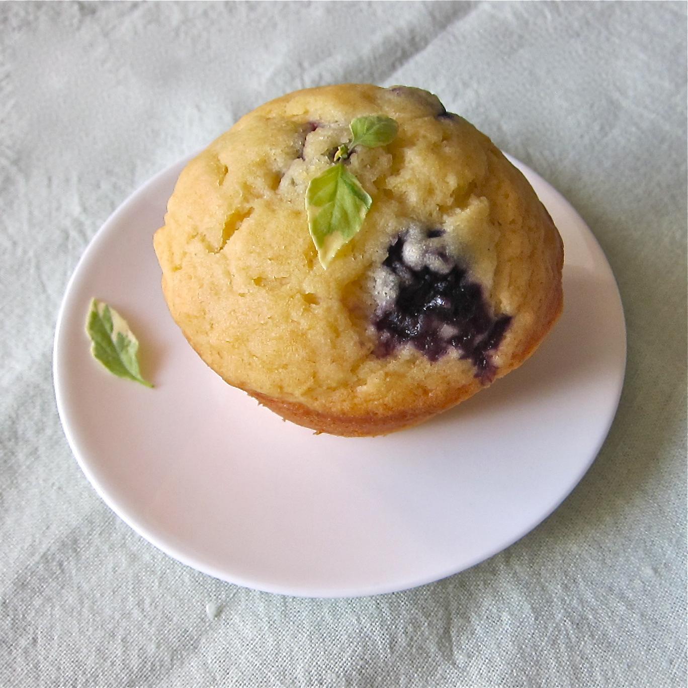 Lemon Blueberry Basil Muffins